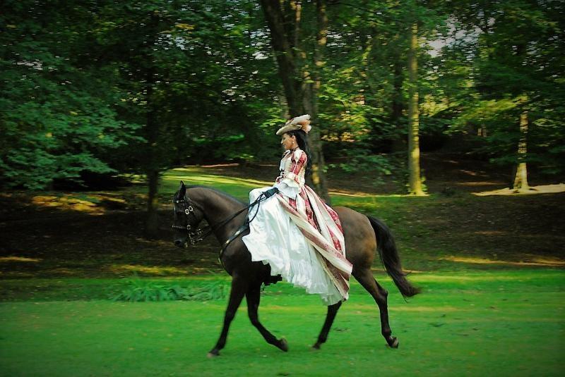 Návštěvníci manětínského zámku prožijí den jako sloužící hraběnky Lažanské